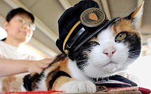catu-japan-station_3418145b